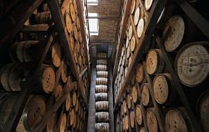 Woodford-Reserve-2020-Baccarat-Edition--Barrels
